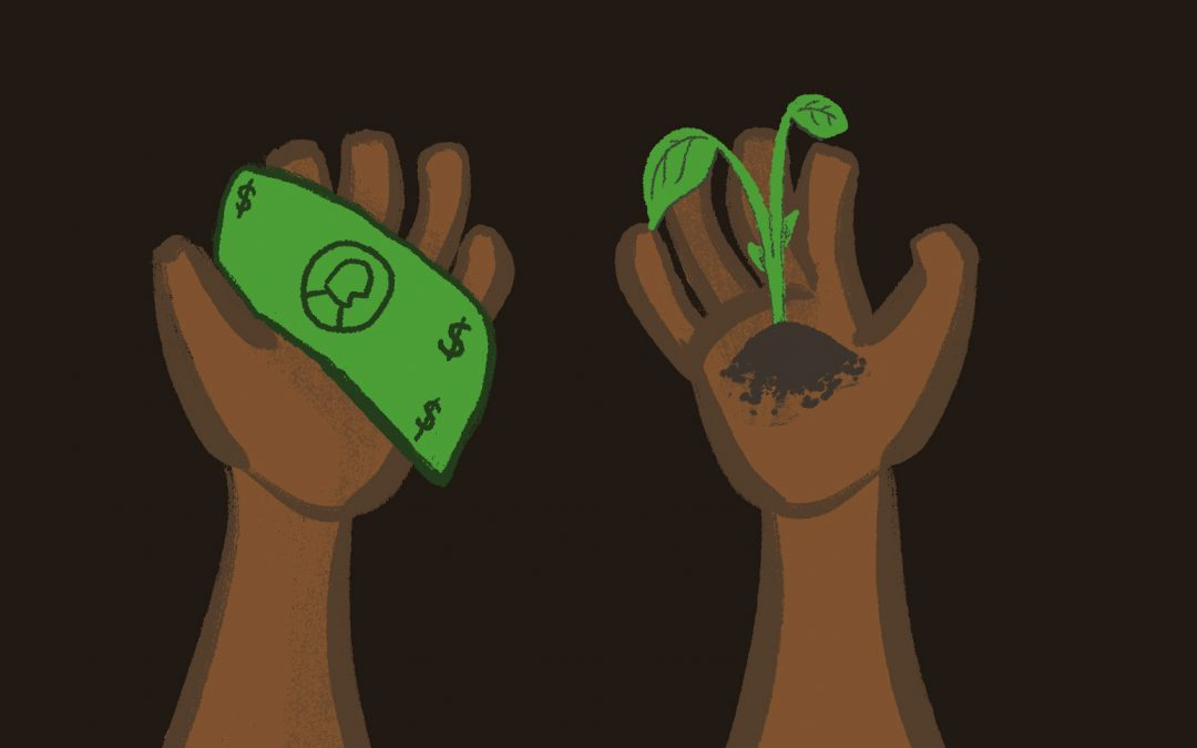 two hands with money in one and a plant in the other